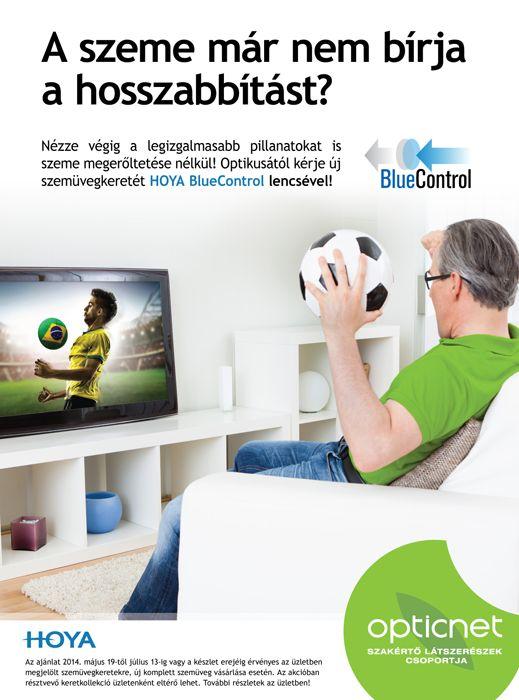 foci vb 2014 blue control